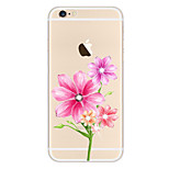 Capa Inteiriça corpo transparente Flor TPU MacioApple iPhone 6s Plus/6 Plus / iPhone 6s/6