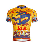 PaladinSport Men 's Short Sleeve Cycling Jersey DX634 dragon robe 100% Polyester