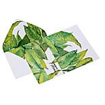 Watercolor leaves letter set envelope (2 envelope 4 stationery, stationery envelope 16.2*11.4CM, 15.9*22, random color)