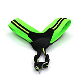 Cat / Dog Collar / Harness Reflective / Adjustable/Retractable / Safety / Soft Green / Rose Polypropylene Fiber