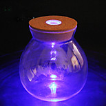 1PC LED DIY Noctilucence Night Light Artware Container Bottle Night Light