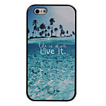 The New Coconut Beach Pattern Painted Camera Fill Light Phone Case For iPhone 5/5S/SE/6/6S/6 Plus/6S Plus