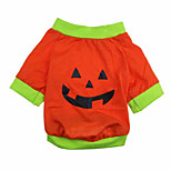 Cat / Dog Coat / Shirt / T-Shirt Green / Orange Summer / Spring/Fall Halloween, Dog Clothes / Dog Clothing