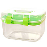 A030 Colorful Transparent Family Health Care Medicine Box Large Household Portable Kit Box Wholesale (Large)