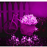 1PCS 7M 50LED Warm White / Natural White / Colorful / Purple / Pink / Red / Blue  Solar String Light Peach
