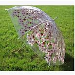 Sakura Transparent Umbrella Transparent Umbrella Shade Umbrella Straight Straight Plans