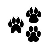 Fashion The Animal Footprints 1 Pattern PVC Bathroom or Bedroom or Glass Wall Sticker Home Decor