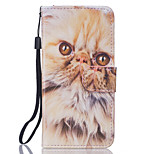 Cat Pattern PU Leather Full Body Case with Stand for iPhone7 6sPlus 6Plus 6S 6