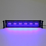 20 Inches(50cm) LED Aquarium Light AC 100-240V Blue and White Extendable Bracket LED Fish Lamp EU Plug