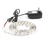 # 1 M 60 5050 SMD Rosso / Blu Impermeabile / Auto-adesivo W Strisce luminose LED flessibili DC12 V