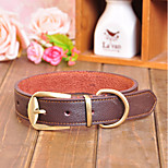 Dog Collar / Leash Adjustable/Retractable Red / Black / Brown Genuine Leather