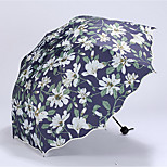 Small Fresh Lilies Vinyl Umbrellas Folded Dual Sun Sunny Umbrella Folding Umbrella Korean Women