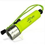 Luces para bicicleta - / Cree Q5 Ciclismo Fácil de Transportar Otro 50 Lumens USB Ciclismo-Iluminación