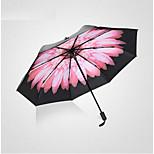 Super Sunscreen Black Umbrella Double Vinyl Umbrellas Uv Three Folding Umbrellas Little Daisy