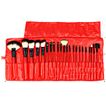 22 Makeup Brushes Set Goat Hair Portable Wood Face Others