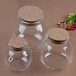 Micro Landscape Ecology Bottle Glass Pots For Succulents Moss DIY Glass Vase (10cm)