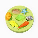 1 Cozimento Bricolage / Ferramenta baking / Alta qualidade / Anti-Aderente / Ecológico / Venda imperdível / Decoração do boloGelo / Bolo