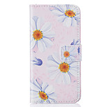 Card Holder Wallet Pattern Flower PU Leather Hard Case For iPhone 7 7 Plus 6s 6 Plus SE 5s 5