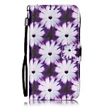 The New Purple Flowers Painted PU Leather Material of the Card Holder Phone Case for iPhone 7 7plus 6S 6plus  5S  SE