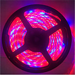 15W E14 LED-kweeklampen TL 300 SMD 5050 1300LM lm Rood / Blauw Decoratief / Waterbestendig DC 12 V 1 stuks