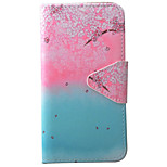 Plum Blossom Pattern PU Material High-End Card Phone Case For iPhone 7  6s 6Plus SE 5S 5