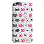 Cat Pattern Phone Shell TPU Material IMD Technology For iPhone 6s 6 Plus SE 5S 5