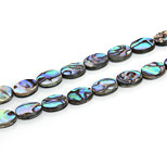 Beadia 10x13mm Oval Natural Abalone Sea Shell Beads (38cm/approx 29pcs)
