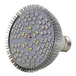 50W E26/E27 Luci LED per la coltivazione PAR38 78 SMD 5730 2500-3200LM lm Luce fredda / Rosso / Blu / Lampada UV (a ultravioletti)
