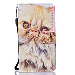 Cat Pattern PU Leather Full Body Case with Stand for Huawei Y560 Y5 II Honor5C Honor8