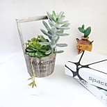 1 Branch Simulation Succulents Artificial Flowers Ornaments Artificial Styrofoam Succulents Plants Garden Decoration