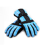 Ski Gloves Full-finger Gloves / Winter Gloves Women's / Men's Activity/ Sports Gloves Keep Warm / Waterproof / Windproof DLGDX®Ski &