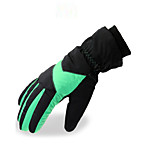 Ski Gloves Full-finger Gloves / Winter Gloves Women's Activity/ Sports Gloves Keep Warm Ski & Snowboard / Snowboarding / Motorbike PUSki