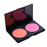 Blush Powder Coloured gloss / Long Lasting / Fast Dry Face 2 Color