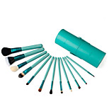12 Makeup Brushes Set Goat Hair Professional / Portable Wood Face/Eye / Lip Green