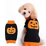 Собака Костюмы Одежда для собак Косплей Цветочные/ботанический Оранжевый
