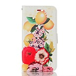 For iPhone 7 Case / iPhone 7 Plus Case / iPhone 6 Case Card Holder / Wallet / with Stand / Flip Case Full Body Case Fruit Hard PU Leather