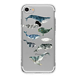 Fish  TPU Case For Iphone 7 7Plus 6S/6 6Plus/5 5S SE