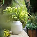 1 Branch Artificial Plants Leaf  Persian Grass Fern Plants Simulation Flower Decoration Arrangement
