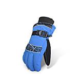 Ski Gloves Full-finger Gloves / Winter Gloves Women's / Men's Activity/ Sports Gloves Keep Warm / WaterproofSki & Snowboard /