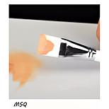 1 Sonstige Pinsel Nylon Pinsel Berufs / Reise / Synthetik / umweltfreundlich / Antibakteriell / Hypoallergen / Transportabel Holz Gesicht