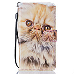 Cat Pattern PU Leather Full Body Case with Stand for Lenovo Vibe K5