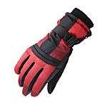 Ski Gloves Full-finger Gloves / Winter Gloves Women's / Men's Activity/ Sports Gloves Keep Warm / Waterproof / Windproof DLGDX®Ski &
