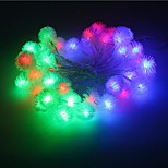 20-LED 2.5M Star Light Waterproof  Plug Outdoor Christmas Holiday Decoration Light LED String Light