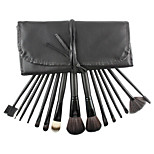 15 Makeup Brushes Set Nylon Professional / Portable Plastic Face / Eye / Lip