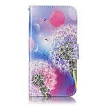 Full Body Card Holder / Wallet / Pattern Dandelion PU Leather Hard Case Cover For LG LG X Screen