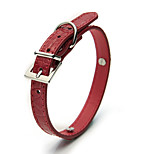 Dog Collar Adjustable/Retractable Solid Red Plastic