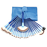 24 Blush Brush / Eyeshadow Brush / Brow Brush / Eyeliner Brush Professional / Travel / Full Coverage Plastic