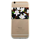For iPhone 6 Case / iPhone 6 Plus Case / iPhone 5 Case Transparent / Pattern Case Back Cover Case Flower Soft TPU AppleiPhone 6s Plus/6