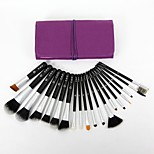 Quantity (pcs) Category Brush Hair Material Features Handle Material Application Brand