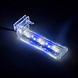 Aquarium LED Lighting White With Switch(es) LED Lamp 220V